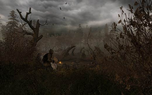 Read review of S.T.A.L.K.E.R.: Clear Sky