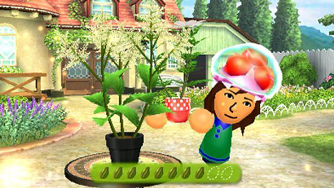 StreetPass Flower Town Screenshot